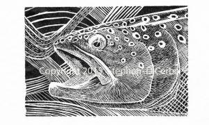 trout-dreams