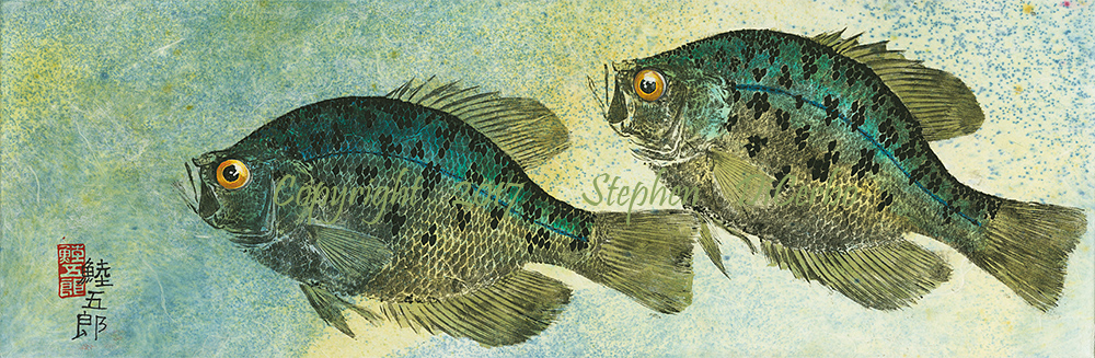 Champlain-Crappie-Pair-1-lo-res-and-scarred-1000-pix