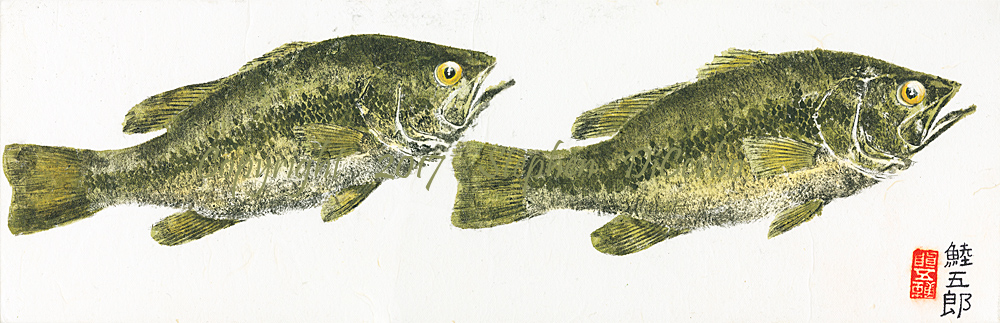 Champlain-Largemouth-Pair-4-lo-res-and-scarred-1000-pix