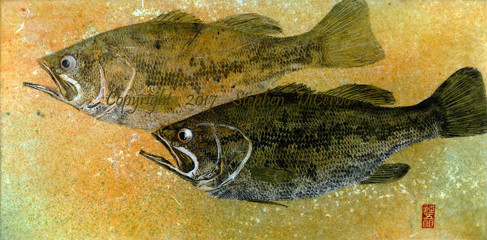 Champlain-Largemouth-Pair-5-lo-res-and-scarred-1000-pix