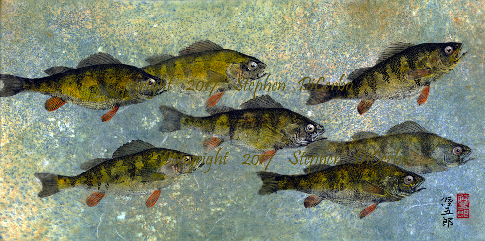 Lake-George-Perch-School-1-lo-res-and-scarred-1000-pix
