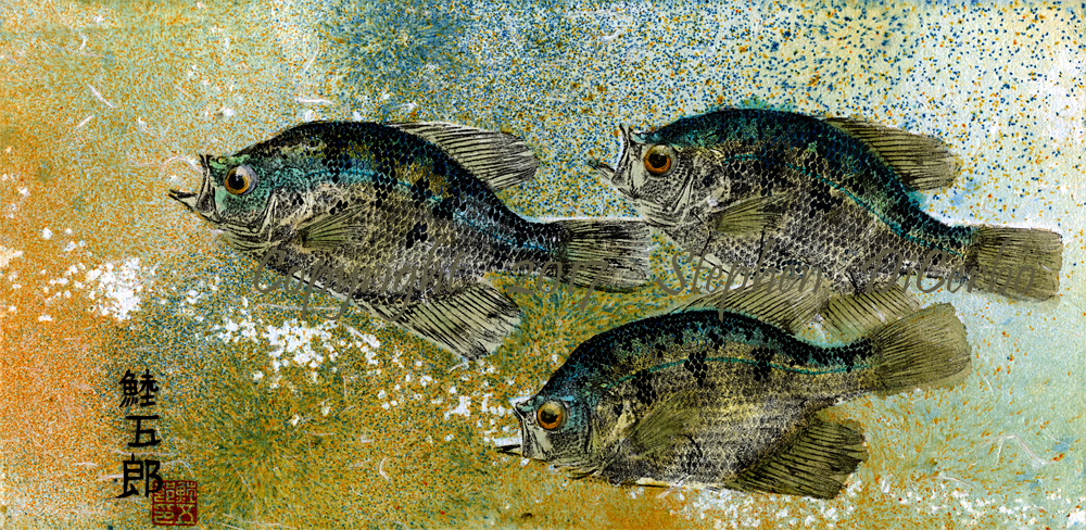 The-Gang-Champlain-Crappie-trio-2-lo-res-and-scarred-1000-pix