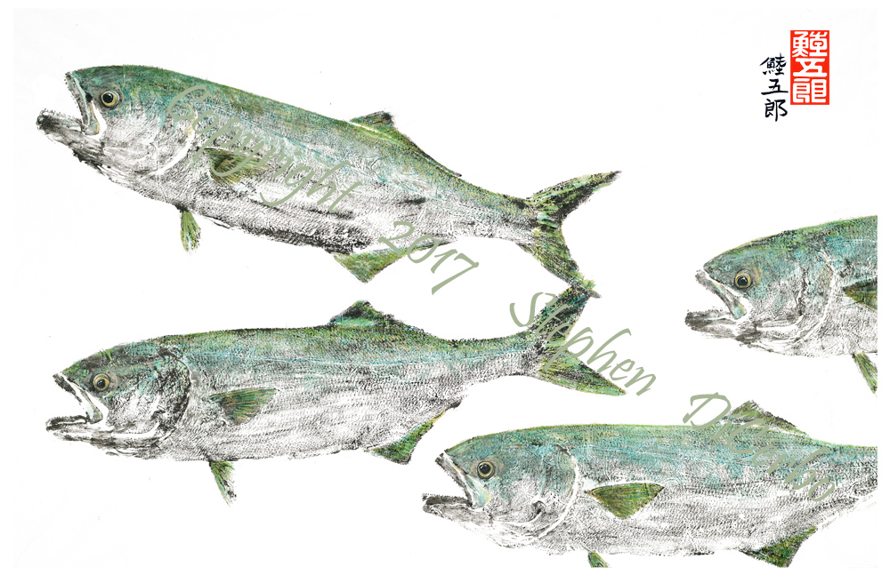 bluefish-marauders--lo-res-and-scarred-1000-pix