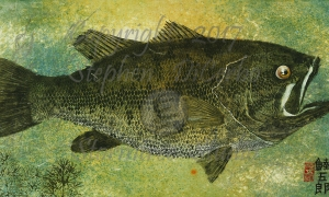 Lake-George-largemouth-1-lo-res-and-scarred-1200-pix